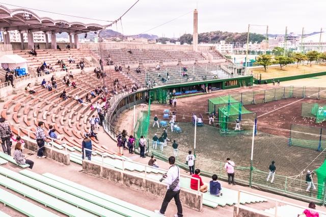 2月の沖縄はプロ野球春季キャンプ!