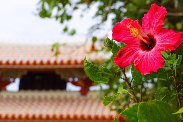 首里城公園イベント「琉球の華みぐい」をご紹介